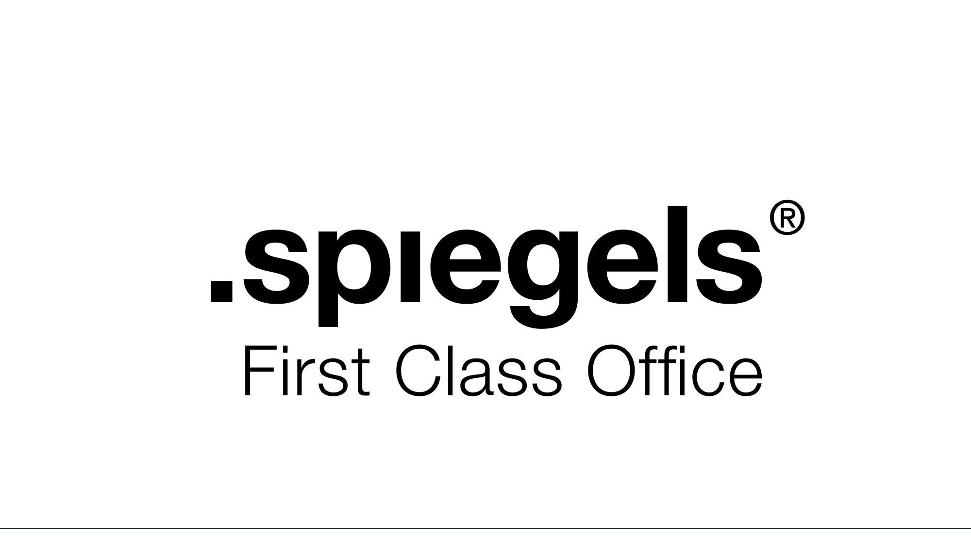 Logo_spiegels_web